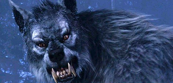 Secondo la leggenda, il licantropo è un uomo condannato da una maledizione a trasformarsi in una bestia feroce ad ogni plenilunio